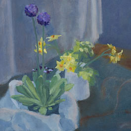 Primula and Narcissi